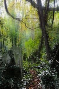 graveyard2_nunheadcemetry_hannesbuhrmann1
